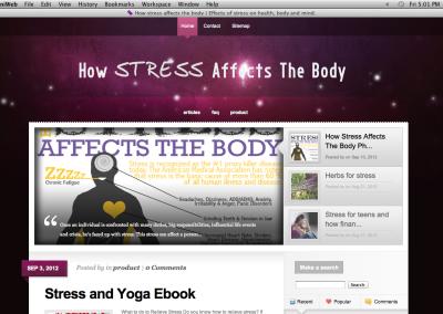 Responsive Wordpress Blog